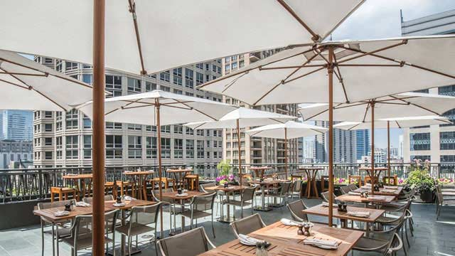 best rooftop bars in chicago, best bars in Chicago, chicago guide, what to do in Chicago, travel guide, Jennifer Worman, Red Soles and Red Wine, noms garden, Hyatt chicago
