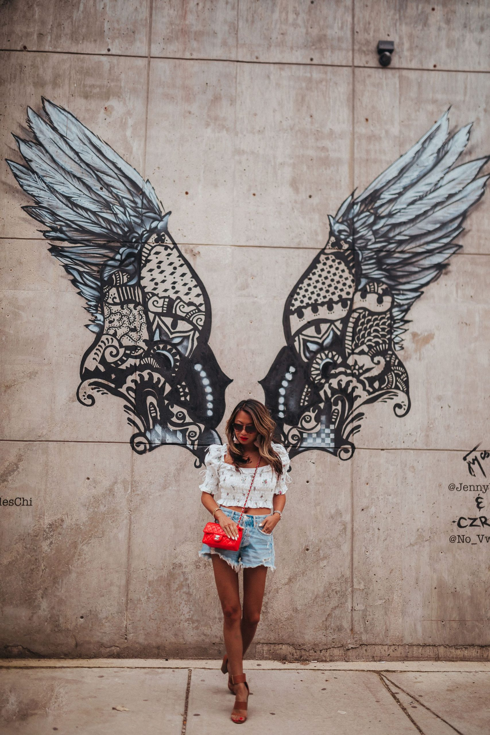 Top 10 Best Instagrammable Walls in Chicago, wall art in chicago, street art in chicago, best wall murals in chicago, photography in chicago, instagram chicago, best places to take photos in chicago, photoshoots in chicago, wall murals in chicago, wall guide, best wall art in chicago, 2020 murals in chicago, chicago guide, chicago blogger, chicago travel, chicago photography, chicago wall art, chicago murals, chicago art, Federales Wings chicago mural, wings street art, chicago wings mural
